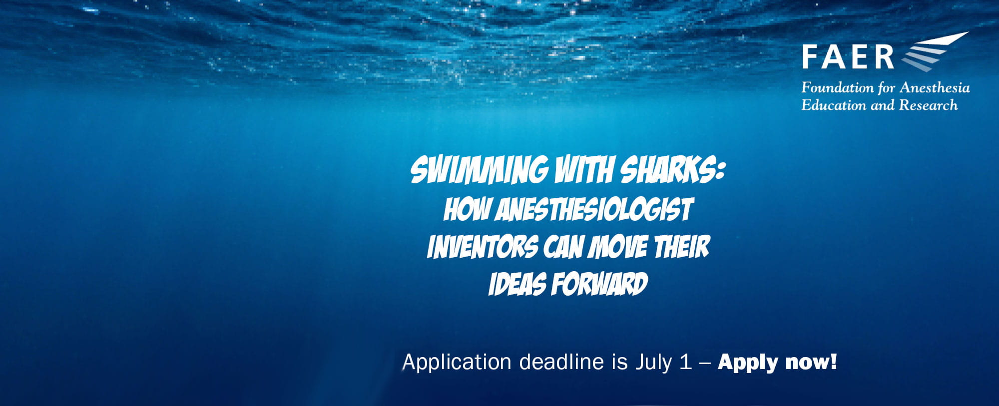 FAER Swimming with sharks apply now